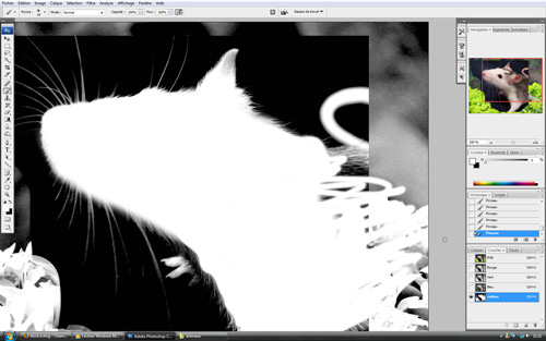 Tutoriel animal hybride par Spartan photomontage powa !